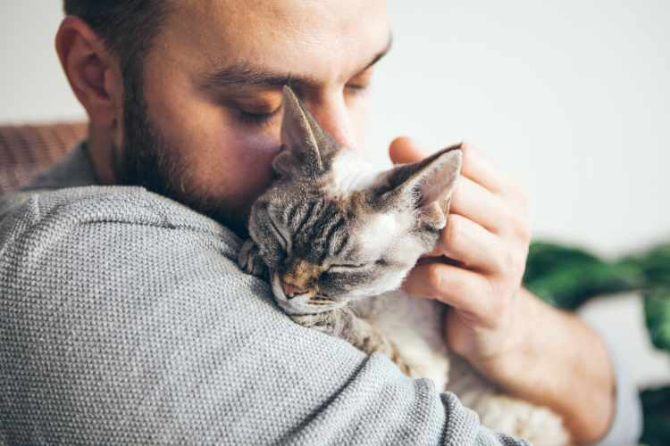 unconditional love from your cat